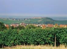 阿尔萨斯des法国途径vins 免版税图库摄影