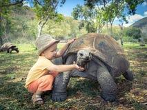 阿尔达布拉环礁巨型草龟和孩子 库存图片