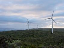 阿尔巴尼风力场,西澳州 库存照片