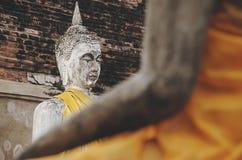 阿尤特拉利夫雷斯,坐的菩萨雕象,细节 免版税库存图片