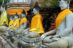 阿尤特拉利夫雷斯,泰国:在Wat亚伊柴Mongkon的Buddhas 库存图片