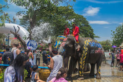阿尤特拉利夫雷斯,泰国- 4月14 :闹饮者在阿尤特拉利夫雷斯享用飞溅与大象的水在Songkran节日期间在2016年4月14日, 免版税图库摄影