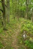 阿巴拉契亚足迹在蓝岭山脉 库存照片