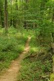 阿巴拉契亚足迹在西南弗吉尼亚-2 免版税库存照片