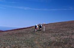 阿巴拉契亚足迹的远足者 库存照片