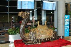 阿布扎比,阿拉伯联合酋长国, 11月 12日2014年:骆驼的雕塑 免版税库存照片