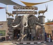 阿布扎比,阿拉伯联合酋长国- 2014年12月22日:艾因动物园照片  免版税库存照片