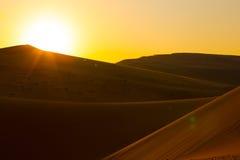 阿布扎比-日落在沙漠 免版税图库摄影