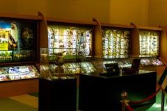 阿布扎比/UAE- 2017年11月13日:扎耶德Exhibition回教族长内部在阿布扎比 免版税库存照片