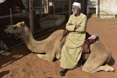 阿拉伯人坐他的独峰驼 免版税库存图片