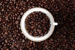 阿拉伯咖啡豆咖啡对的日起始时间 库存照片