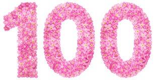 阿拉伯数字100,一百,从桃红色勿忘草开花 库存照片