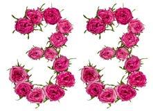 阿拉伯数字33,三十三,从红色花上升了, isola 免版税库存照片