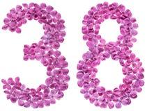 阿拉伯数字38,三十八,从丁香花,被隔绝 免版税库存图片