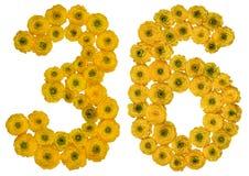 阿拉伯数字36,三十六,从毛茛黄色花, 免版税库存图片