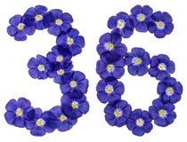 阿拉伯数字36,三十六,从胡麻蓝色花, isolat 图库摄影