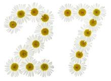 阿拉伯数字27,二十七,从春黄菊白花  库存照片