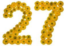 阿拉伯数字27,二十七,从buttercu黄色花  图库摄影