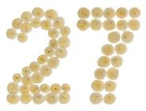 阿拉伯数字27,二十七,从chrysanth奶油色花  免版税库存图片