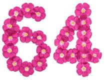 阿拉伯数字64,六十四,从胡麻桃红色花,隔绝在白色背景 免版税库存图片