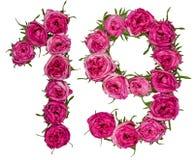 阿拉伯数字19,十九,一个,从红色花上升了, isol 免版税库存照片