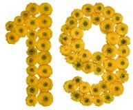 阿拉伯数字19,十九,从毛茛黄色花, 库存图片