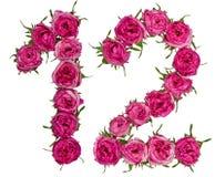 阿拉伯数字12,十二,从红色花上升了,隔绝  免版税库存照片