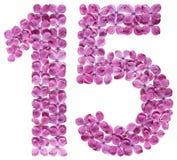 阿拉伯数字15,十五,从丁香花,隔绝在w 免版税库存照片