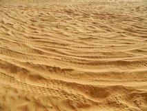阿拉伯沙漠细节 免版税库存照片