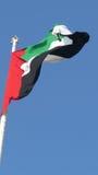 阿拉伯联合酋长国旗子 库存照片