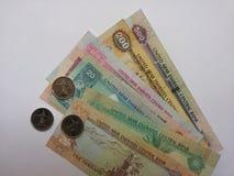 从阿拉伯联合酋长国的货币 库存图片