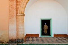 阿拉伯风景 库存图片