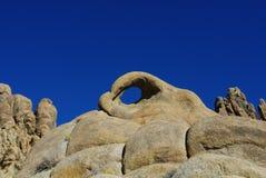 阿拉巴马,加利福尼亚的眼睛 库存图片
