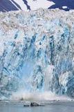 阿拉斯加冰川冰产犊 免版税图库摄影