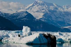 阿拉斯加冰川哥伦比亚湾冰打破 库存图片