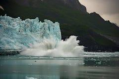 阿拉斯加冰河海湾产犊 免版税库存图片