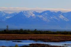 阿拉斯加在Denali国家公园附近的山脉 免版税库存图片