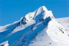 阿拉斯加多雪的山峰 库存图片