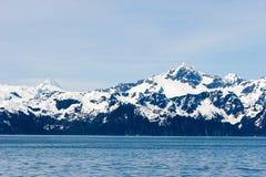 阿拉斯加多雪的山峰 免版税库存图片