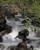 阿拉斯加小瀑布 免版税库存图片