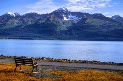 阿拉斯加椅子 免版税库存图片