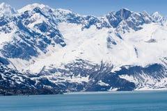 阿拉斯加海湾冰川国家公园 免版税库存照片