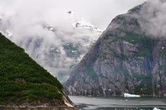 阿拉斯加海湾冰川 库存照片