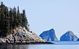 阿拉斯加海湾kenai国家公园s 免版税库存图片