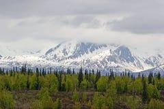 阿拉斯加熔化范围雪 免版税图库摄影