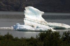 阿拉斯加的一个小的片断 免版税图库摄影