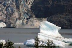 阿拉斯加的一个盛大例子 库存图片