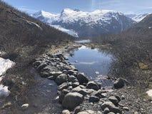 阿拉斯加的冒险 库存照片