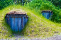 阿拉斯加的国家公园 免版税库存照片