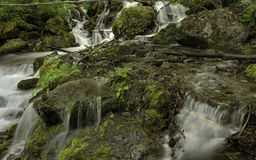 阿拉斯加的夏天小河 库存图片
